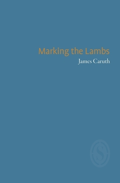 james-caruth-marking-the-lambs_(1)