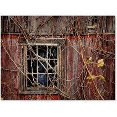 rowan-window