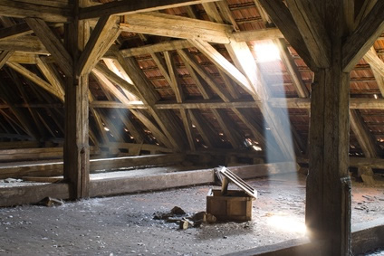 Damp-or-rot-in-roof-timbers