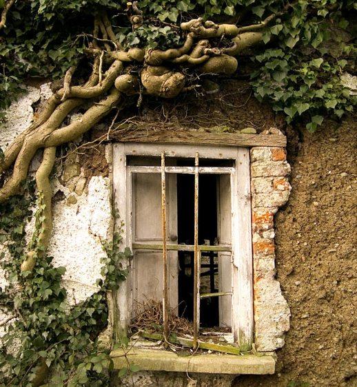 window 3